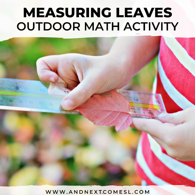 Measuring leaves outdoor math activity for kids
