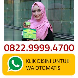 https://api.whatsapp.com/send?phone=6281388884997&text=Halo%2C%20CohaBlog