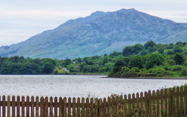 View of the Cooley Mountains from the Greenway