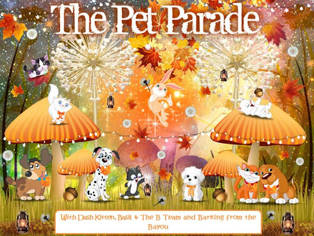 The Pet Parade Autumn Banner 2019 @BionicBasil Dash Kitten & Barking from the Bayou