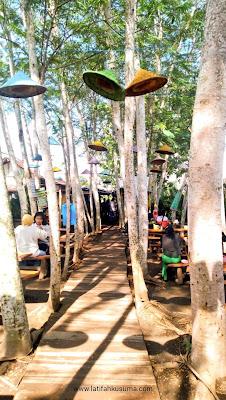 Pohon Sengon Soto Terbis