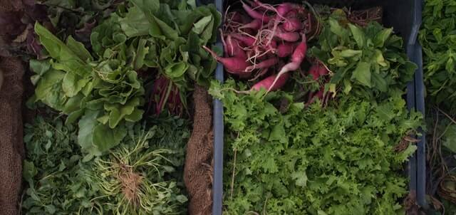 Advantages of consuming leafy vegetables