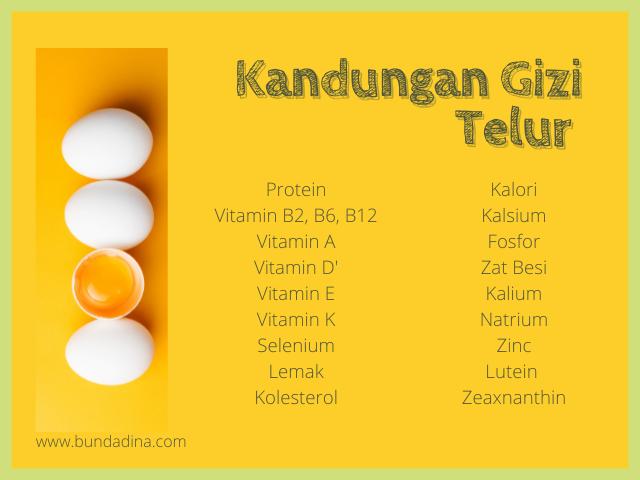 Kandungan Gizi Telur