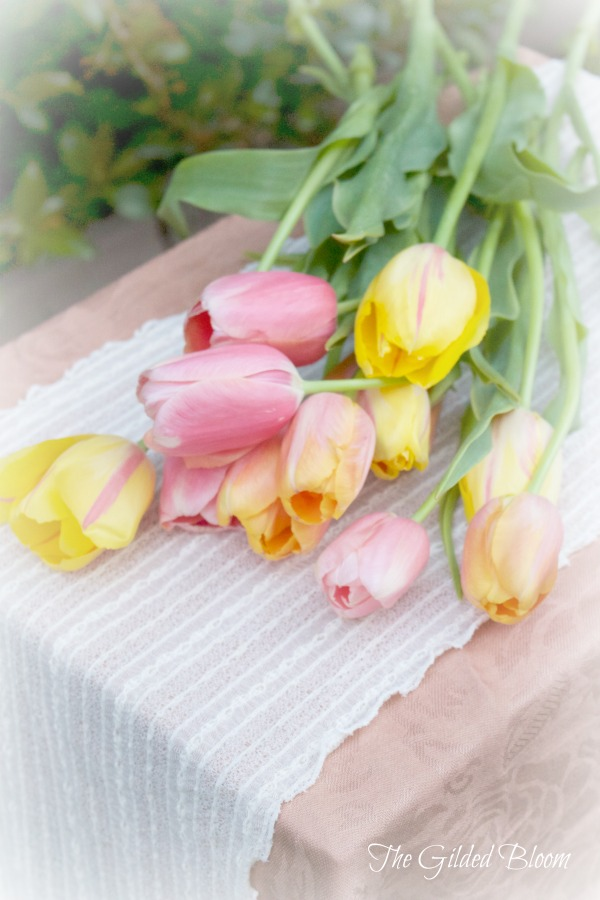Pink Yellow Pastel Tulips
