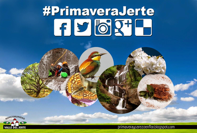 #PrimaveraJerte  La Primavera en el Valle del Jerte