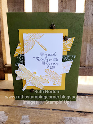stampin up, dragonfly garden