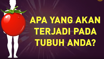 Mulailah Makan 1 Tomat Setiap Hari dan Lihat Hasilnya