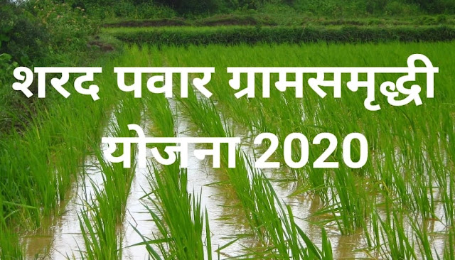 sharad pawar gram samridhi yojna 2020 maharashtra mmarathi
