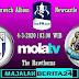 Prediksi West Bromwich Albion vs Newcastle United — 4 Maret 2020