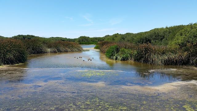 Riserva Naturale Regionale sul fiume Stella