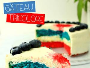 Gâteau tricolore bleu blanc rouge {France}