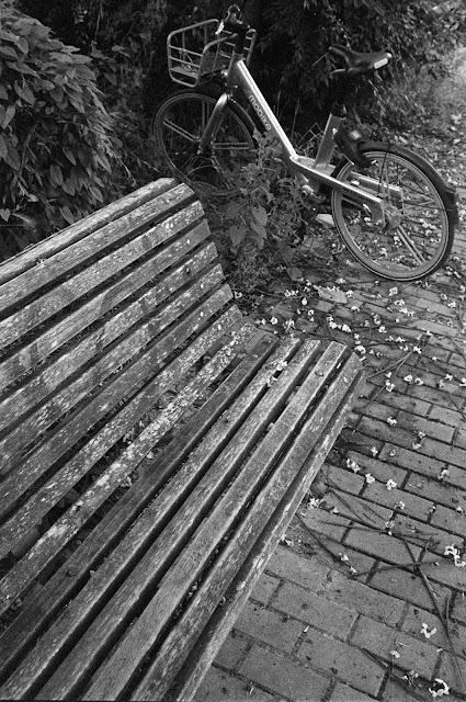 Con Carls Zeiss Jena Flektogon 35 mm f/2.8 © Valentín Sama