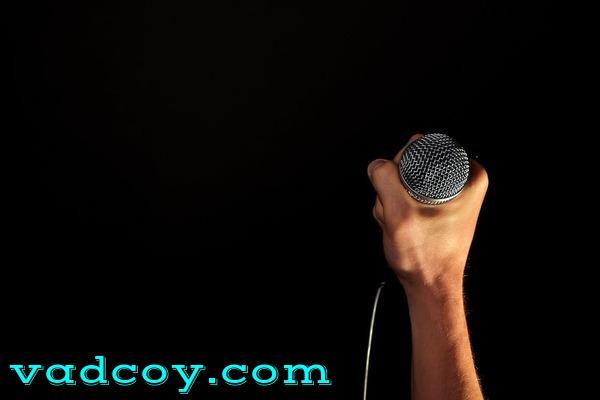 Penyanyi Profesional