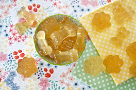 Chamomile gelatin gummy treats for dogs shaped like paws and bones