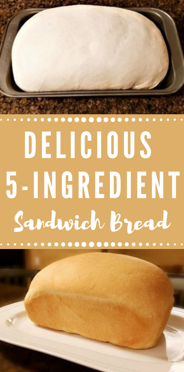 Thrifty Homemade Sandwich Bread #recipe #homemade #whole30 #paleo #halthy