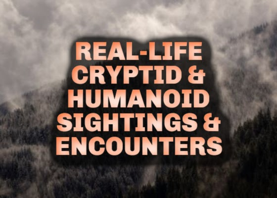 Real-Life Cryptid & Humanoid Sightings & Encounters