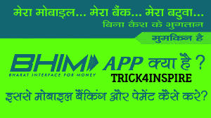 BHIM App Kya hai -Download aur Upyog Kaise Kare ! Full Guide In Hindi