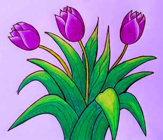 gambar-bunga-tulip
