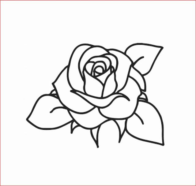 gambar-sketsa-bunga-mawar-mudah