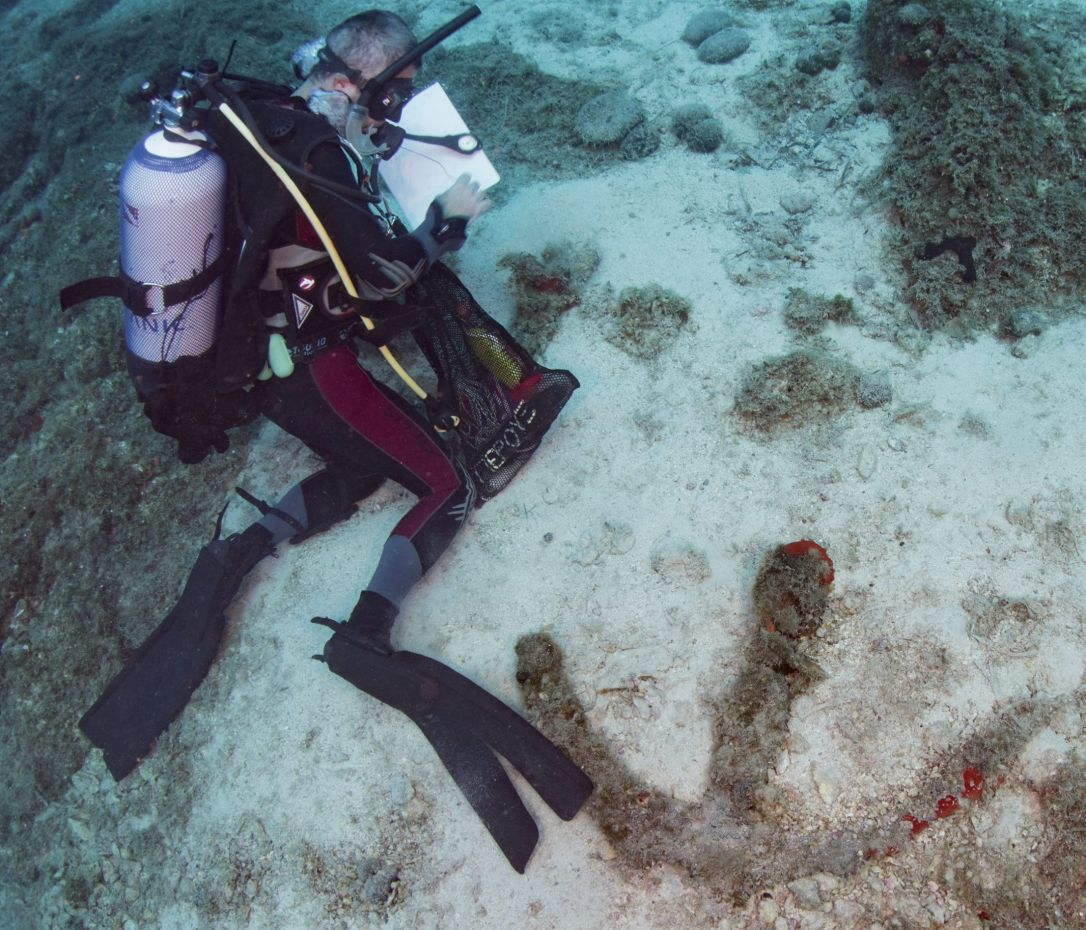Eight Roman Era Shipwrecks Discovered Off Greek Island Of