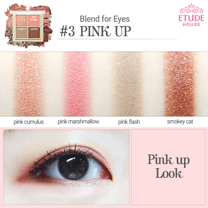 The Beauty Sweet Spot: REVIEW: Etude House Blend For Eyes in #3 Pink Up