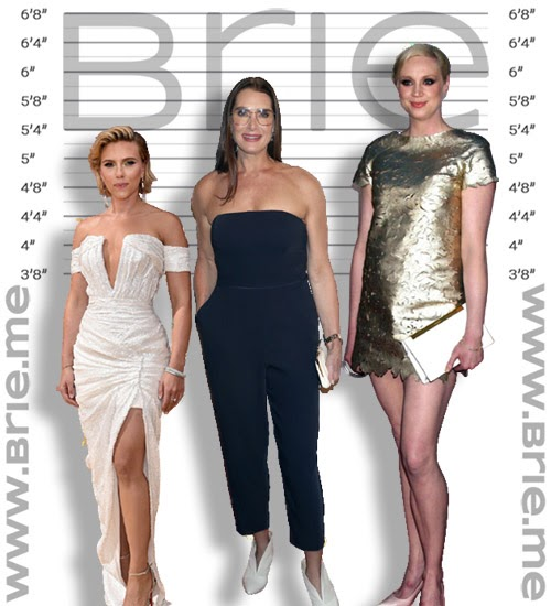 Scarlett Johansson, Brooke Shields, and Gwendoline Christie height comparison