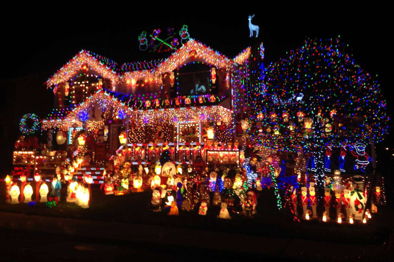National Christmas Lights Day Wishes Images