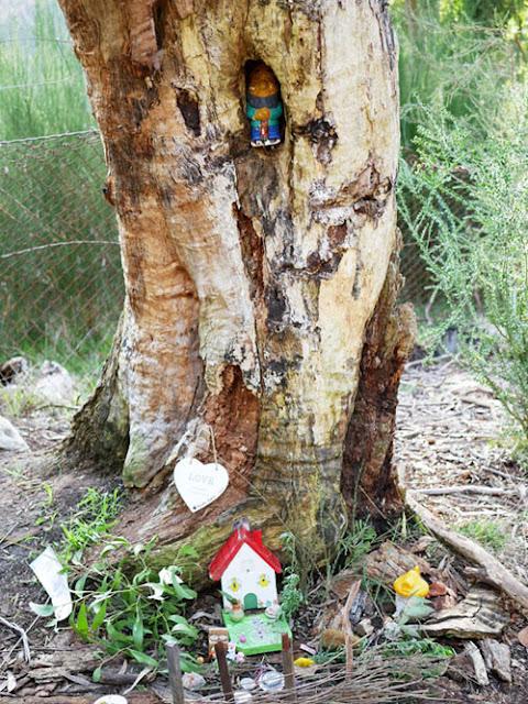 Heysen trail fairy garden