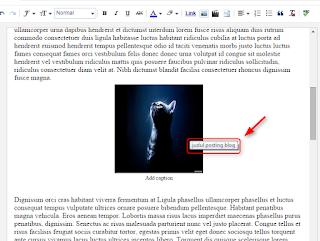 Cara membuat gambar di blogger lebih SEO friendly
