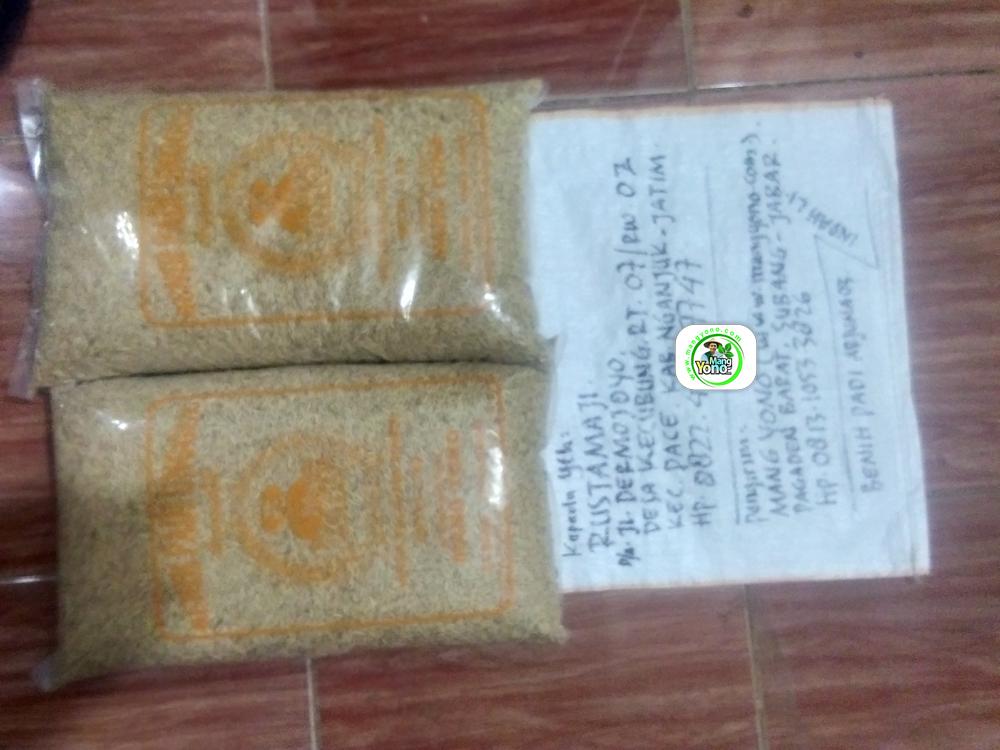 Benih Padi yang dibeli   RUSTAMAJI Nganjuk, Jatim. .   (Sebelum packing karung).
