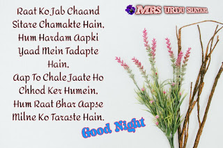 Best Shayari images good night, Beutyful Good Night Shayari, 2020 Good Night Shayari in hindi