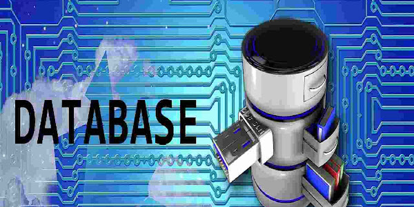 What Is Database? How Does Database Work? How Can You Develop Your Own Database?