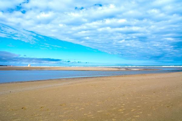 Narbonne (11) : Elle promène son chien et découvre une jambe humaine sur la plage
