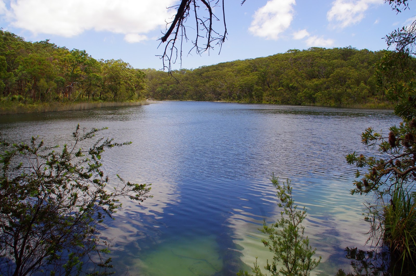 Blue Lake Stradbroke Island