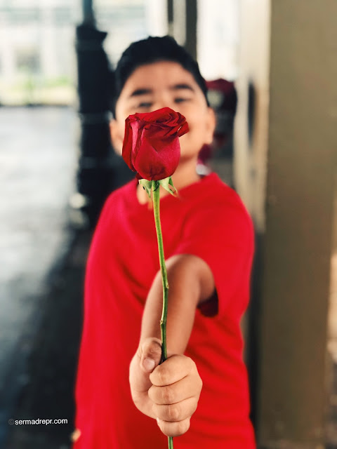 niño con una rosa