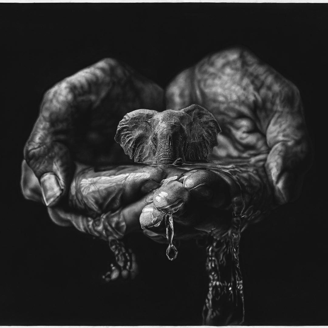 01-An-Elephant-in-my-Hands-Detail-Jono-Dry-Eyes-and-other-Black-and-White-Graphite-Realistic-Drawings-www-designstack-co