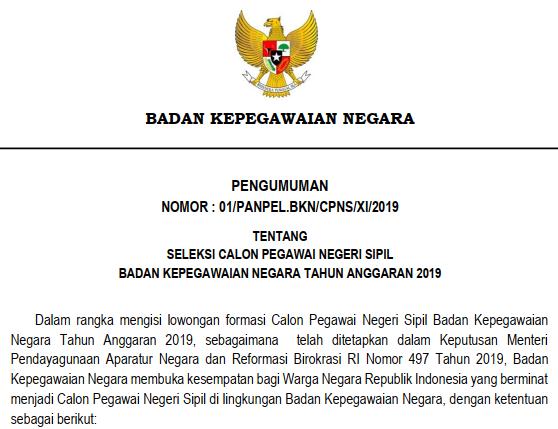rincian formasi cpns bkn 2019 www.tomatalikuang.com