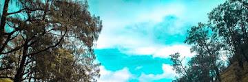 Daftar 7 Gunung di Pulau Jawa dengan Savana Indahnya yang wajib untuk dikunjungi