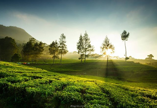 wisata riung gunung pangalengan