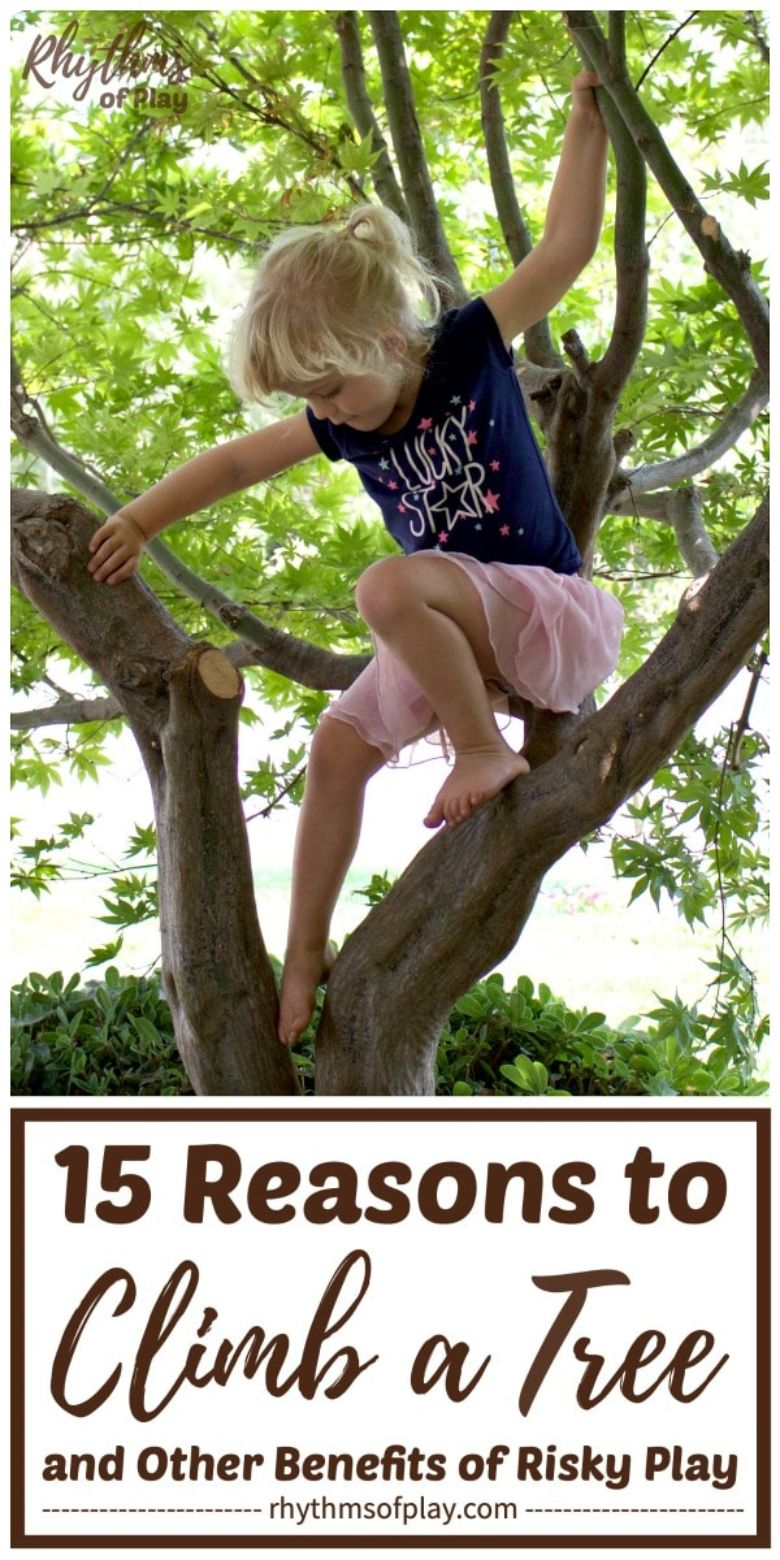 outdoor activities for kids - reasons to climb a tree