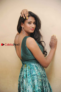 Actress Vinaya Pos at Haalu Thuppa Movie Press meet  0008.jpg