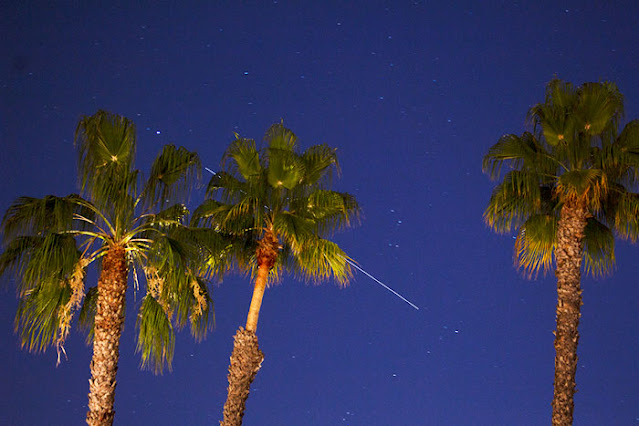 ISS overhead, past the trees, in this 30 second, 47mm DSLR image (Source: Palmia Observatory)