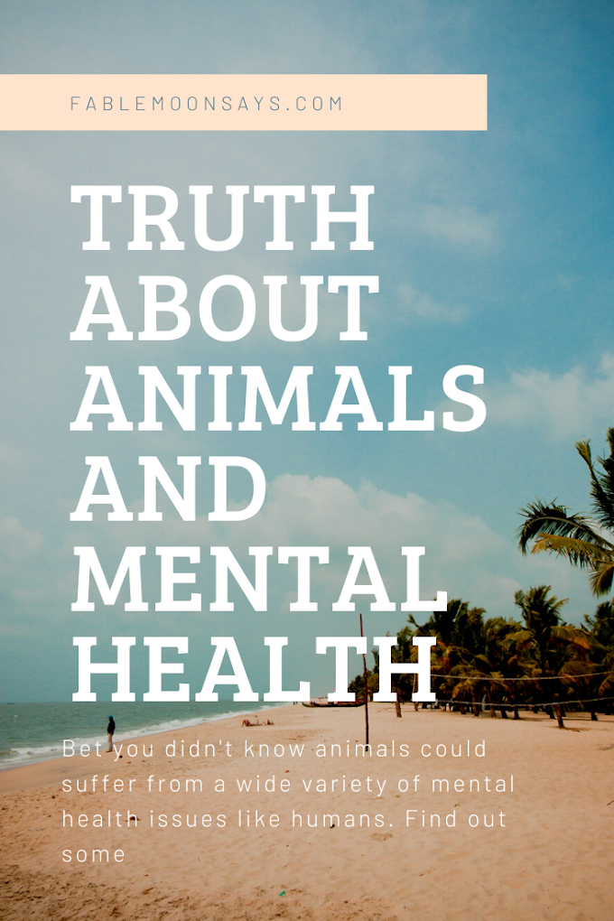 The Truth About Animals and Mental Health
