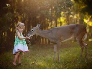 Ziua internaţională a animalelor
