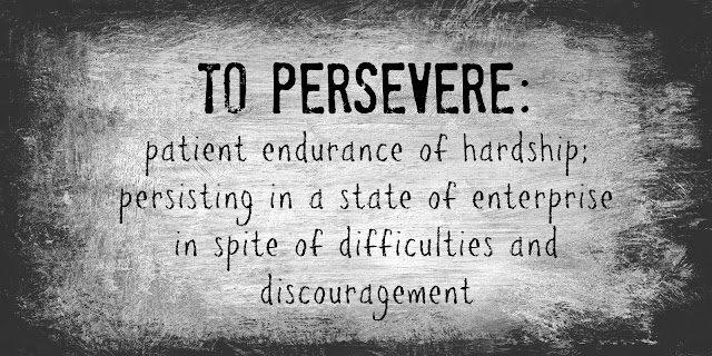 image result for 3 Perseverance Tips
