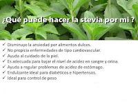 http://steviaven.blogspot.com/2016/09/Que-es-la-stevia-rebaudiana.html