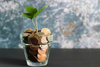 Mengembangkan Pendapatan