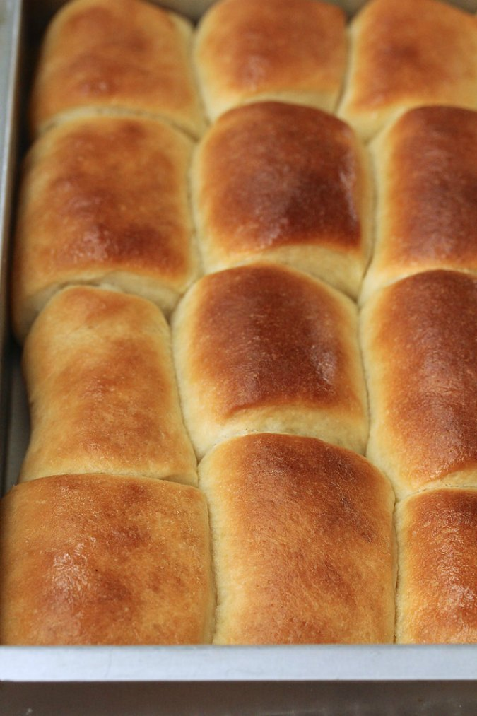 Parker House Rolls baked in pan
