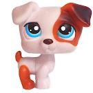 Littlest Pet Shop 3-pack Scenery Jack Russell (#151) Pet