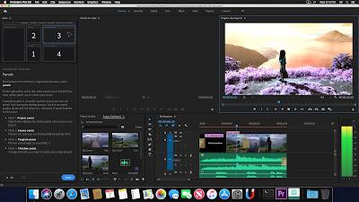 Adobe Premiere Pro 2020 v14 For Mac Torrent Full Crack